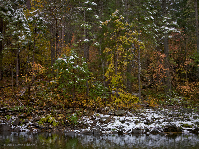 Fall into Winter - © 2011 David Hibbard