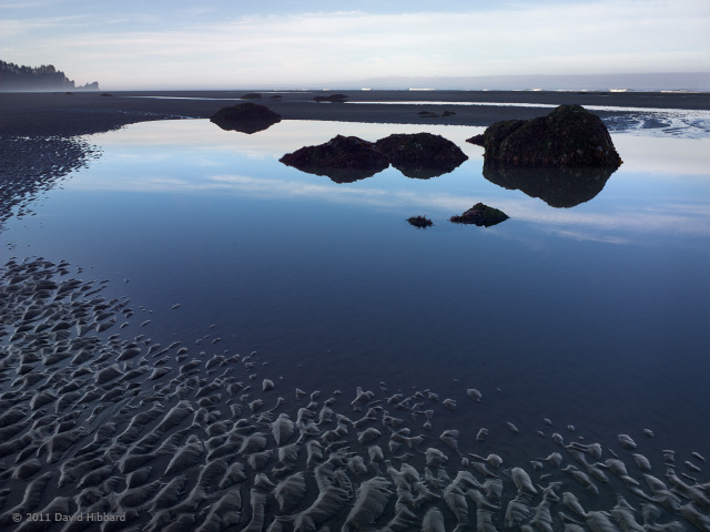 Tidal Pool and Rippled Sand - © 2011 David Hibbard