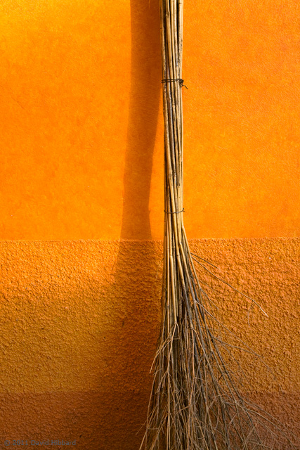 Broom - © 2011 David Hibbard