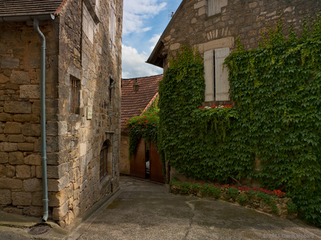 Alleyway, St-Cyprien - © 2011 David Hibbard