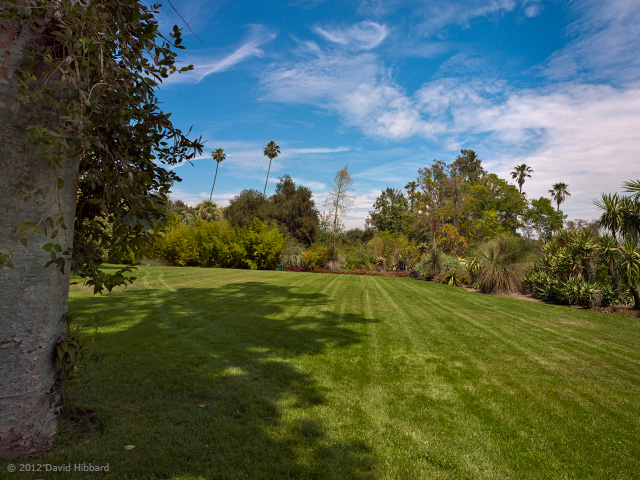 Huntington Gardens 2 - © 2012 David Hibbard
